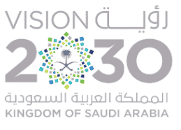 Rencontres d'affaires Transformation digitale en Arabie saoudite ''Saudi Vision 2030''